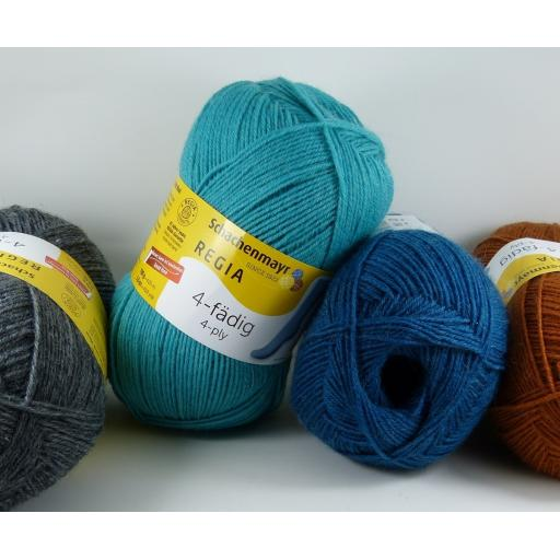 Regia Uni 4ply 100g Solid Colours