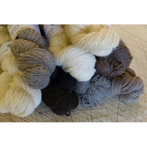 West Yorkshire Spinners Undyed British Breeds DK